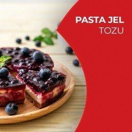 Pasta Jel Tozu